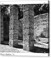 Mcintosh Sugar Mill Tabby Ruins 1825  Acrylic Print