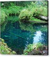 Mckenzie River, Oregon Acrylic Print