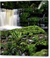 Mclean Falls In Southland New Zealand Acrylic Print