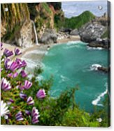 Mcway Falls Acrylic Print by Buck Forester