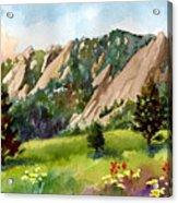 Meadow At Chautauqua Acrylic Print