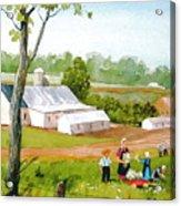Meadow Daisies Acrylic Print
