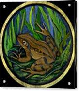 Meadow Frog Acrylic Print by Anna Folkartanna Maciejewska-Dyba