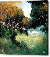 Meadow Acrylic Print by Kevin Lawrence Leveque