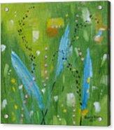 Meadow Musing Acrylic Print