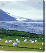 Meadow With Hay Bales And Glaciers Near Jokulsarlon Lagoon In Iceland Acrylic Print