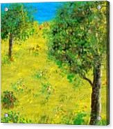 Meadow With Trees Acrylic Print