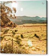 Meadows And Mountains Acrylic Print
