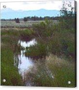 Meadows Glory Acrylic Print
