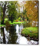 Meandering Creek In Autumn Acrylic Print