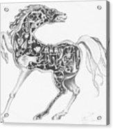 Mechanical Horse Acrylic Print