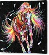 Medicine Fire Pony Acrylic Print