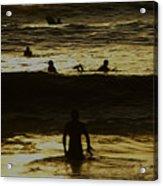 Meditari - Gold Acrylic Print