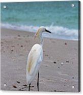 Meditating On The Sea Acrylic Print