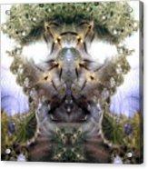 Meditative Symmetry 5 Acrylic Print