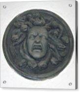 Medusa's Fury Acrylic Print