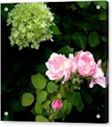 Melody Of Flowers Acrylic Print