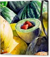 #18 Melons Plus Acrylic Print