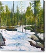 Melting Snow At Umea Norrbotten Sweden 2002   Acrylic Print