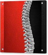 Memento Mori - Silver Human Backbone Over Red And Black Canvas Acrylic Print