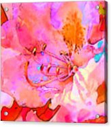 Memories Of Spring Acrylic Print