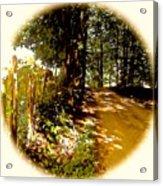 Memory Lane Acrylic Print