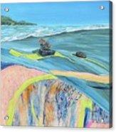 mendocino coast II Acrylic Print
