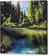 Merced River Bank Acrylic Print
