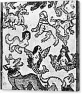 Mermaids, 1475 Acrylic Print