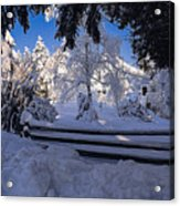 Merry Christmas And A Happy New Year Acrylic Print