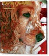Merry Christmas Art 29 Acrylic Print