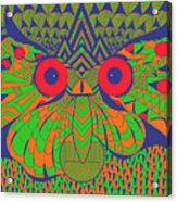 Mesmerizing Owl Acrylic Print