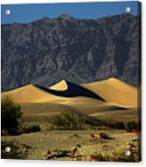 Mesquite Flat Dunes - Death Valley California Acrylic Print