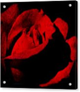 Seduction In Red Acrylic Print