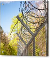 Metal Sharp Barbed Wire Acrylic Print
