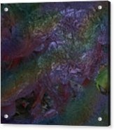 Metallic Color Acrylic Print
