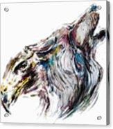 Metamorphosis I Acrylic Print