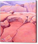 Metamorphosis Acrylic Print