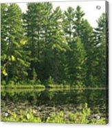 Mew Lake Algonquin Park Acrylic Print