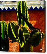 Mexican Style  Acrylic Print by Susanne Van Hulst