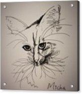 Micha Acrylic Print