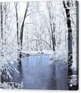 Michgan Winter 10 Acrylic Print