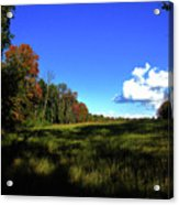 Michigan Fall Colors 12 Acrylic Print
