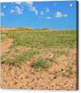 Michigan Sand Dune Landscape In Summer Acrylic Print