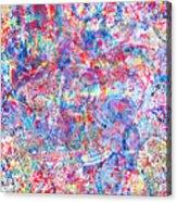 Microcosm Acrylic Print