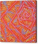 Microcosm Vii Acrylic Print by Rollin Kocsis