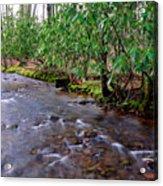 Middle Fork Mist Acrylic Print