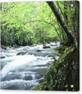 Middle Fork River Acrylic Print