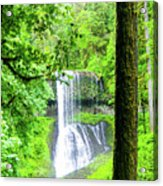 Middle North Falls 5 Acrylic Print