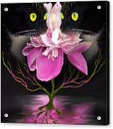 Midnight Dance Acrylic Print